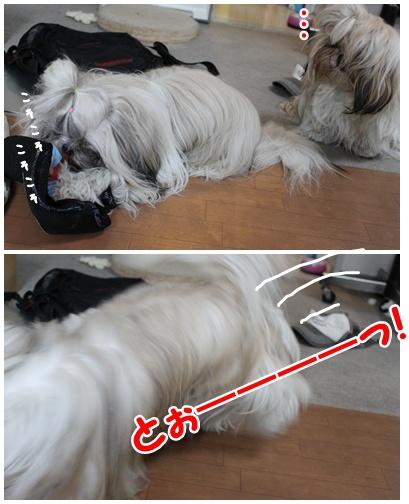 2010-06-17-09.jpg