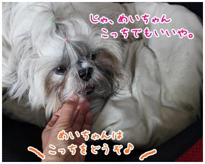 2010-06-20-03.jpg