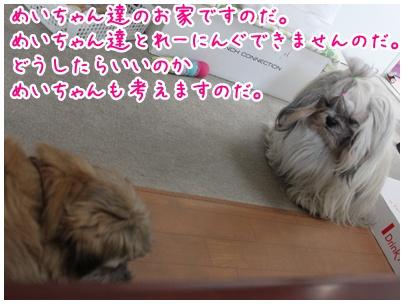 2010-06-28-03.jpg