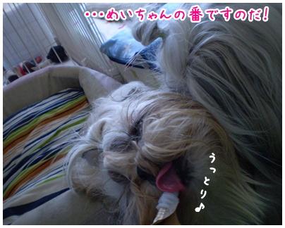 2010-06-30-02.jpg