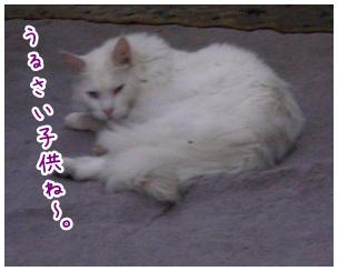 2010-07-01-05.jpg