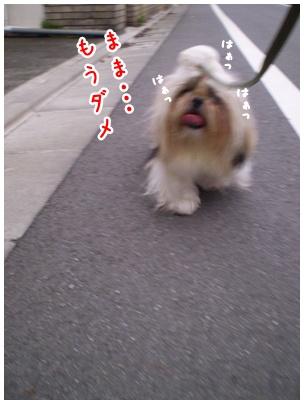 2010-07-01-06.jpg