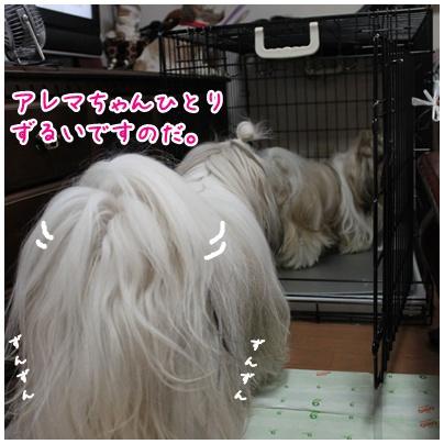2010-07-03-03.jpg