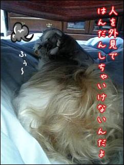 Image001-2.jpg