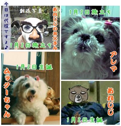cats2009-01-25-02.jpg