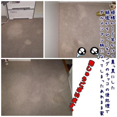 cats2009-04-01-01.jpg