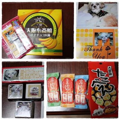 cats2009-09-21-05.jpg