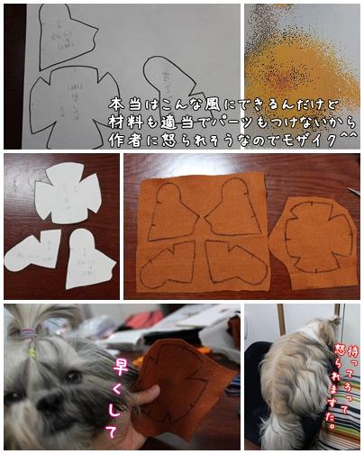 cats2009-09-24-04.jpg