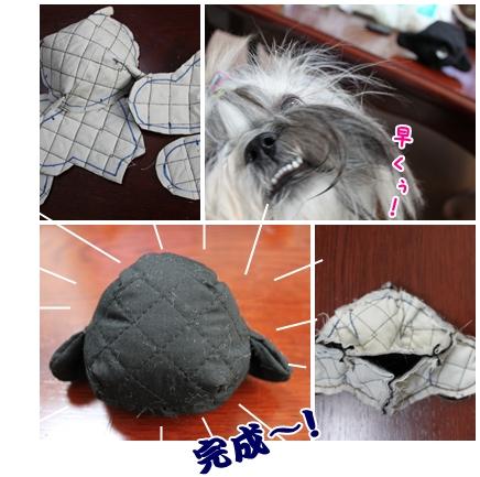 cats2009-09-25-01.jpg