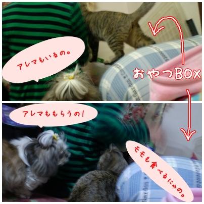 page2008-11-26.jpg