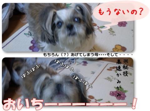 page2008-12-17-02_convert_20081217203749.jpg