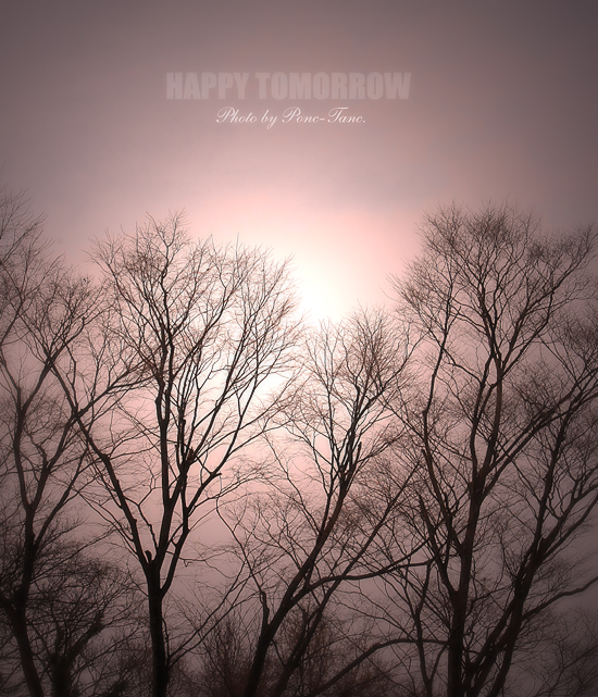 happy tomorrow