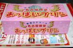 2005123005.jpg