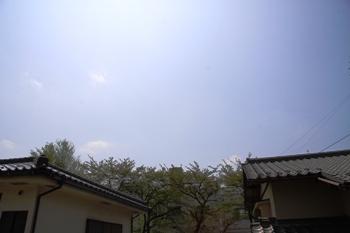 コピー ~ IMG_3700