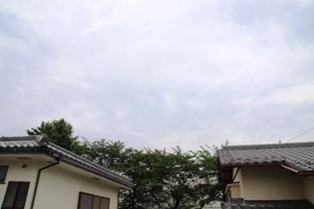 コピー ~ IMG_9356