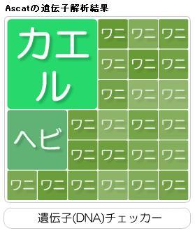 asidenshi.jpg