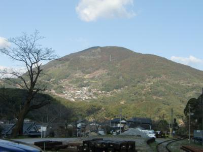 桑田山全体0309