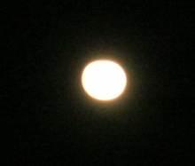 DSCN0239-1.jpg