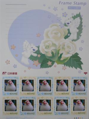 P1090151-1.jpg