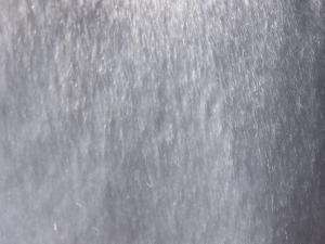うさぎドレス5