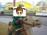 東条湖おもちゃ王国③