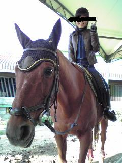 乗馬体験。