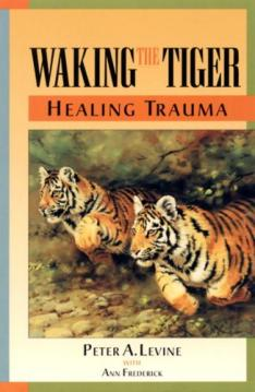 waking-the-tiger-cover.jpg