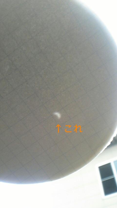 20090722104621.jpg