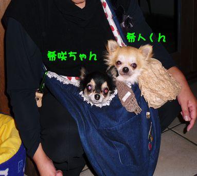 希咲ちゃん&希人くん