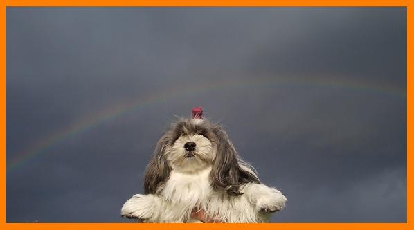 あずと虹 1