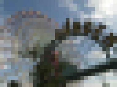 mosaic_convert_20091214145220.jpg