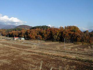 冬を待つ田畑