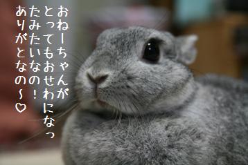 20081120_16.jpg