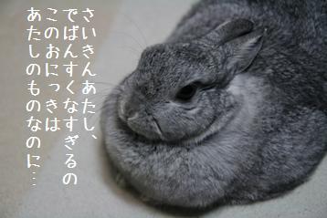 20081122_17.jpg