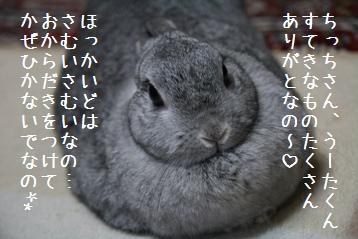 20081125_2.jpg