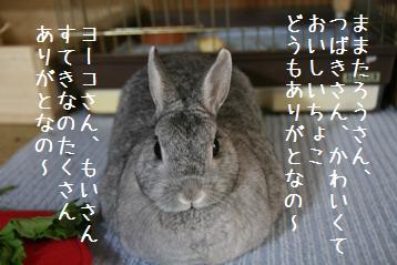 20081130_6.jpg