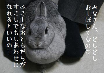 20081203_3.jpg