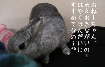 20081203_4.jpg