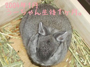 20081221_1.jpg
