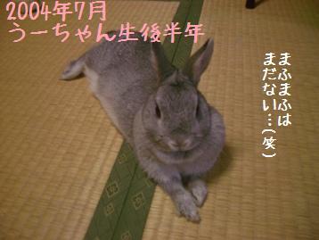 20081221_3.jpg