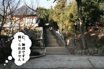 20081229_10.jpg