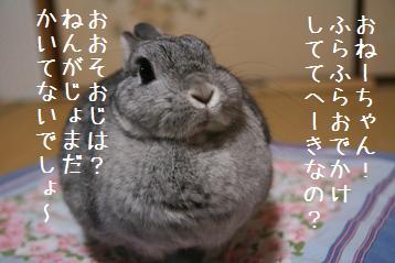20081229_19.jpg