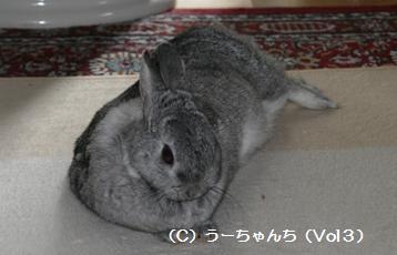 20081231_51.jpg