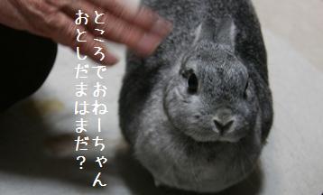 20090110_9.jpg