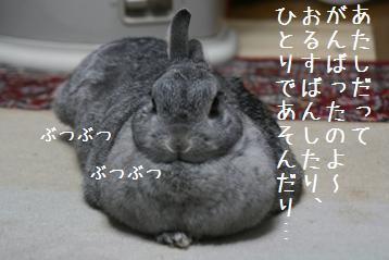20090207_2.jpg