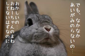 20090214_3.jpg