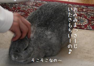 20090222_3.jpg