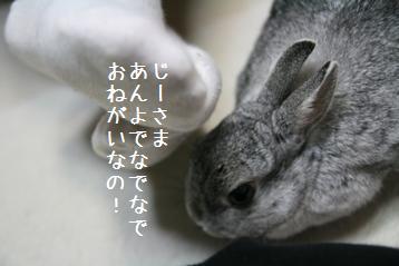 20090228_2.jpg