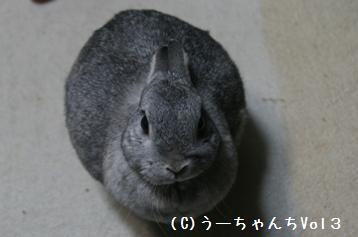 20090424_1.jpg
