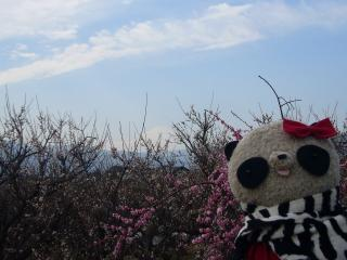 うっすら富士山と記念撮影